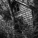 """Old Home"" by skullbone76"
