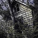 """Abandoned Home"" by skullbone76"