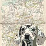 """Territory Map Dachshund"" by DogHistory"
