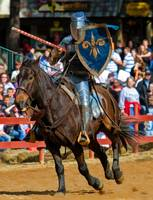 Blue Knight Jousting