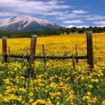 """""""Antero Peak"""" by Scenic_Lens"""