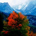 """""""Colors in the Rockies"""" by Scenic_Lens"""