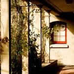 """Window Path"" by raetucker"