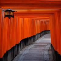 Fushimi Inari Taishi, Kyoto (伏見稲荷大社) 2 Art Prints & Posters by Mason Hastie