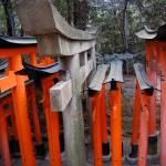 """""""Fushimi Inari Taishi, Kyoto (伏見稲荷大社) 3"""" by MasonHastie"""