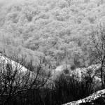 """""""Valley in Snow"""" by DanielSin"""