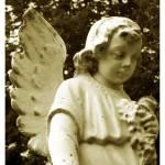"""Send Me an Angel"" by TashaYBrown"