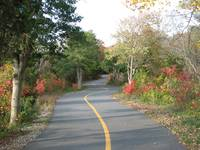 Bike Path in Sandy Hook