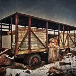 """Caravan"" by darius"