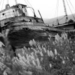 """Ship wreck black and white"" by Beckerphotos"