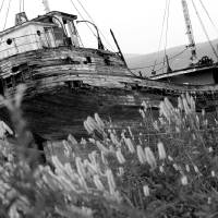 Ship wreck black and white Art Prints & Posters by Robert Becker
