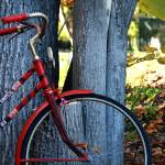 """""""Red Bicycle"""" by TheIcePixy"""