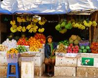Fruits Seller