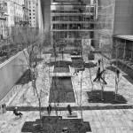 """""""MoMA Sculpture Garden"""" by SusanPszenitzki"""