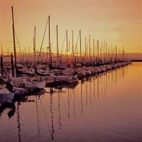 Shilshole Bay Marina at Sunset Art Prints & Posters by Stewart Hopkins