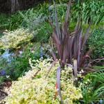 """green garden"" by DonnaGrayson"