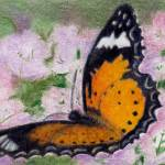 """Butterfly Flutter aceo"" by bmthour"