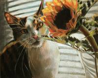 Still Life with Sunflower and Cat