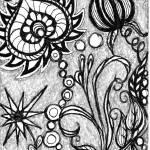 """""""B&W Blooms"""" by motleymonkey"""