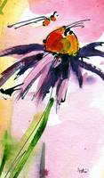 Macro Coneflower Watercolor by Ginette