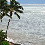 """Classic Maui Beach"" by jbjoani2"