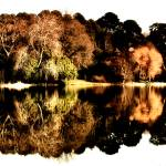 """Mount Stewart Lake"" by stephenmaxwell"