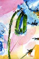 Macro Modern Blue Poppies Watercolor by Ginette