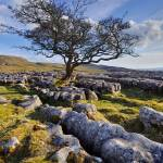 """Limestone Country - The Yorkshire Dales"" by Dave_Lawrance_Photography"