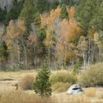 """High Sierra Retirement"" by harrythomas"