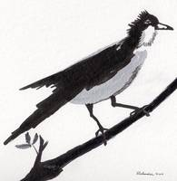 Zen Sumi Bird 1b Ink on Watercolor Paper Ricardos