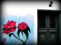 The flowers & the door