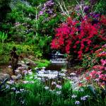 """Costa Rica Garden"" by jbjoani2"