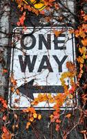 One Way Sign on Seattle Waterfront