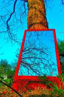 Mirror leaning on Tree