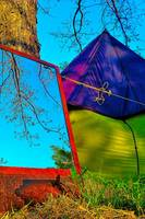 Mirror, Colored Tent and Tree