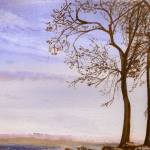 """Windy Trees in Nyack, NY"" by Kirillie"