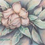 """Magnolia Blossom"" by DeborahWillardDesign"