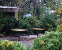 empty tables, rocky point park