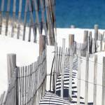 """Cold Storage Beach Snow Fence"" by ChrisSeufert"