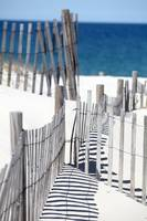 Cold Storage Beach Snow Fence