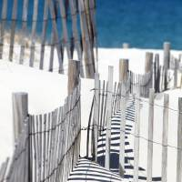 Cold Storage Beach Snow Fence Art Prints & Posters by Christopher Seufert