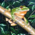 """Bamboo Frog"" by FletcherDale"