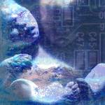"""Fetus_Board_by_digitaleyes010 - Copy (3) - Copy"" by DanGuy"