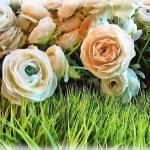"""""""Pastel Roses"""" by jbjoani2"""