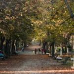 """Roma - Villa Borghese"" by agiordano"