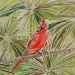 """Cardinal, Wax and watercolor"" by MAP8990"