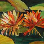 """""""Water Lilly"""