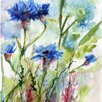 """Cornflowers Wildflower Watercolor by Ginette"" by GinetteCallaway"