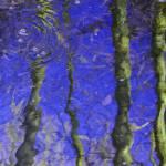 """""""lost in water, lost in wind nº4"""" by wesleybrittain"""