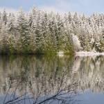 """""""WINTER ON THE LAKE"""" by westcoastphotoart"""